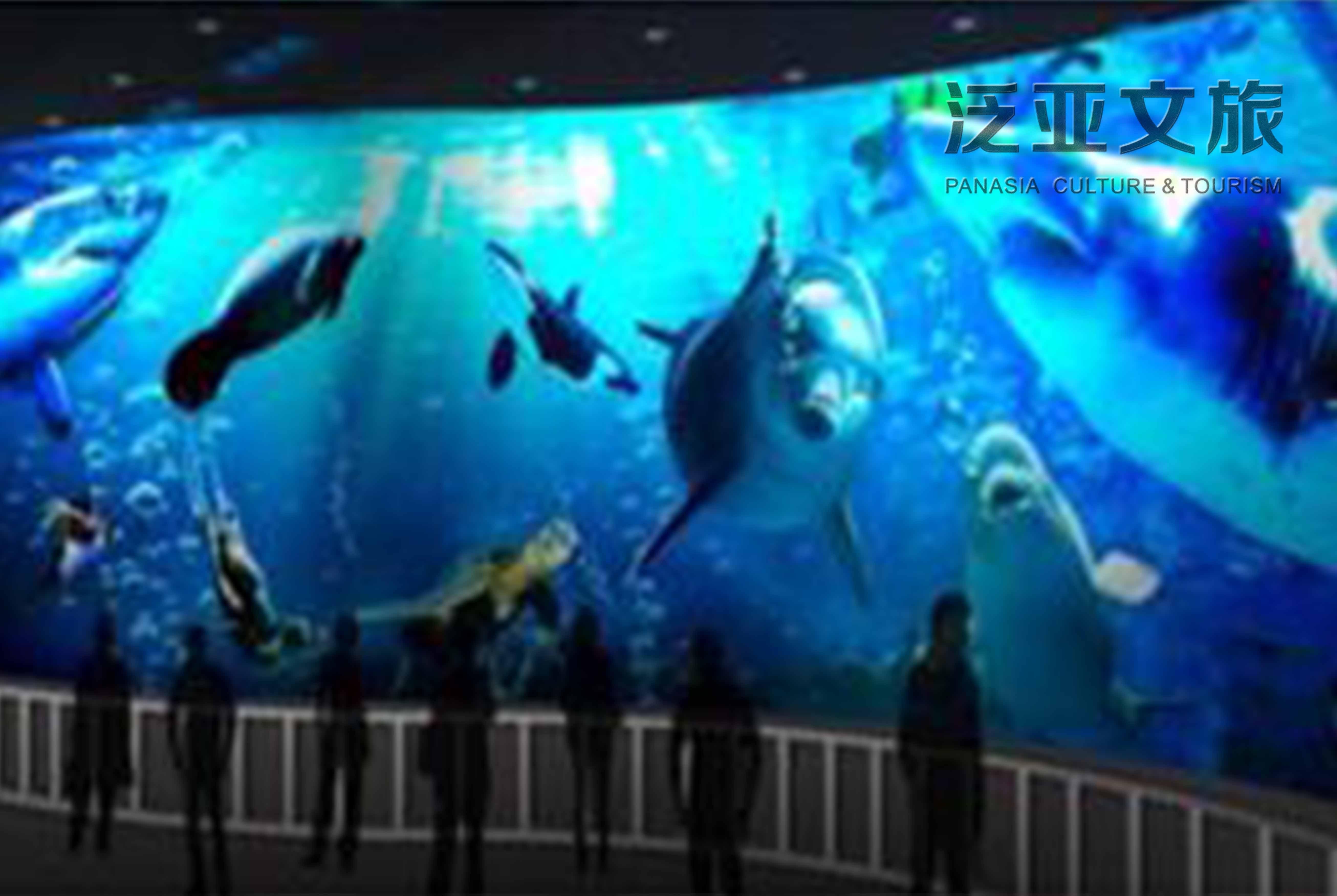 壁纸 海底 海底世界 海洋馆 水族馆 5225_3501